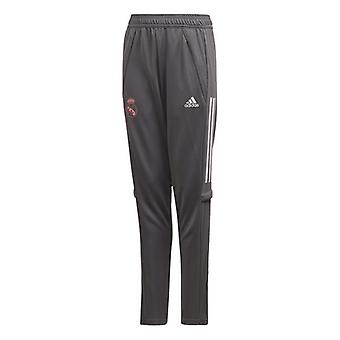 Long Sports Trousers Real Madrid Adidas TR PNT Y