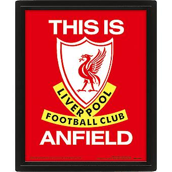 Liverpool Framed 3D Picture