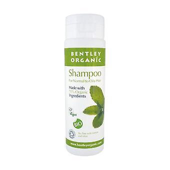 Normal to oily hair shampoo 250 ml