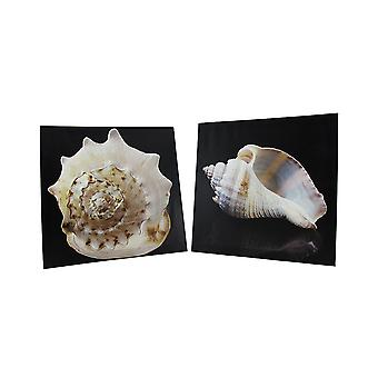 Pair of Seashell Printed Canvas Wall Hangings
