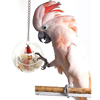 Removable Plastic Feeding Ball Bird Cage Accessory Transparent Bird Feeding Ball For Periquito Gray Africano Cockatiel Budgie