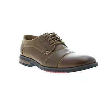 Steve Madden  Mens Brown Leather Casual Lace Up Oxfords Shoes