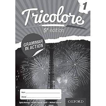 Tricolore Grammar in Action 1 8 pack by MascieTaylor
