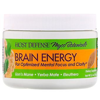 Fungi Perfecti, Myco Botanicals, Brain Energy, 3.5 oz (100 g)