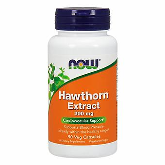 Now Foods Hawthorn Extract, 300 mg, 90 Vcaps