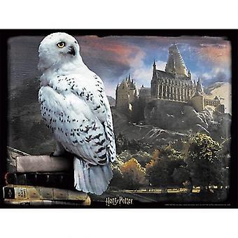Harry Potter 3D Image Puzzle 500pc Hedwig