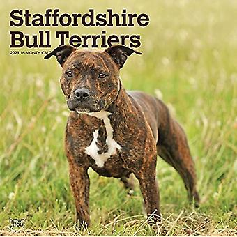 Staffordshire Bull Terriers 2021 Square Btuk Calendrier par Browntrout