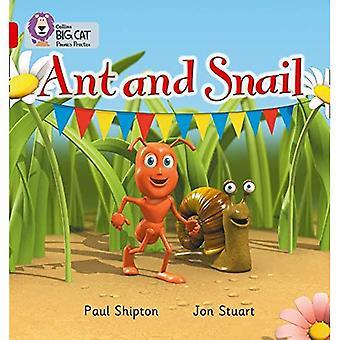 Ant en slak: rode A / Band 2A (Collins Big Cat Phonics)