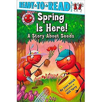 Primavera está aqui!: uma história sobre sementes (Ready-To-Read: nível 1)
