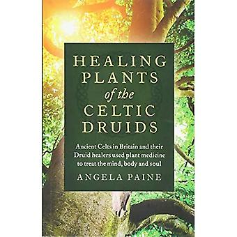Healing Plants of the Celtic Druids: Ancient Celts in Britain and their� Druid healers used plant medicine to treat the mind, body and soul