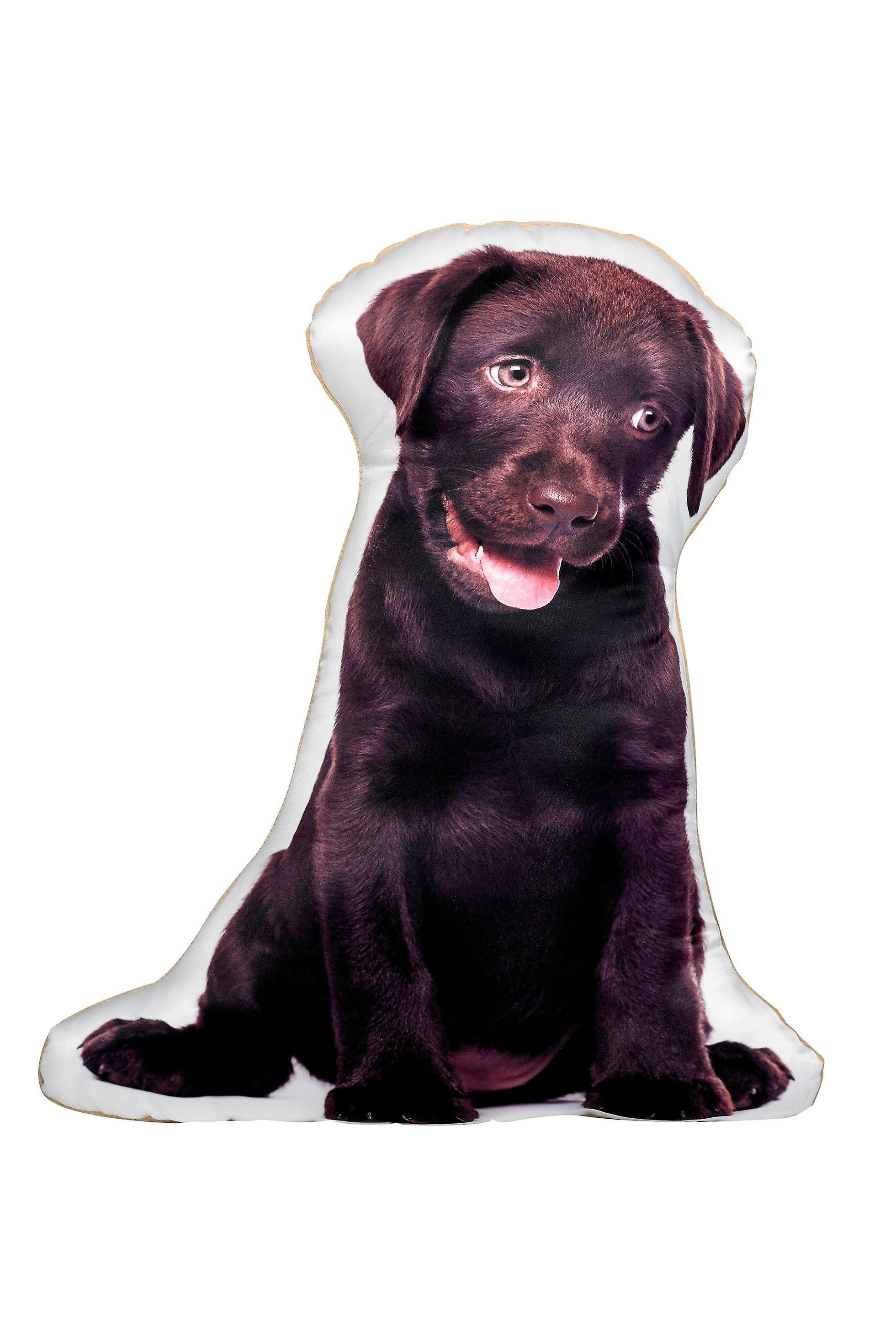 Adorable chocolate labrador shaped cushion