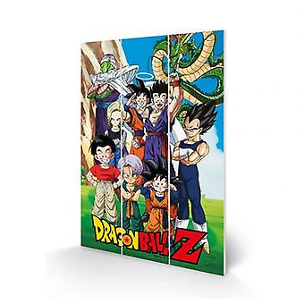 Dragon Ball Z Wood Print
