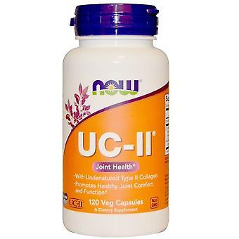 UC-II - Colágeno Tipo II Não Sem perdas (120 Cápsulas Vegetarianas) - Agora Alimentos