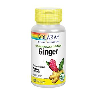 Solaray Ginger, 100 Tappi