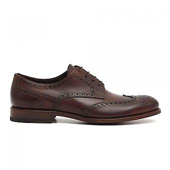 Brown Leather Swallow Tail Derby Shoe