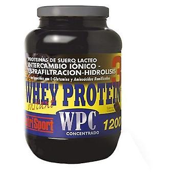Nutrisport Whey Protein 3 Choco
