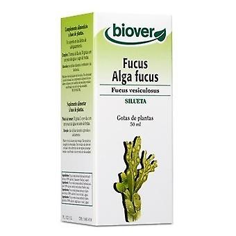 Biover Blasentang Fucus Vesiculosus 50 ml