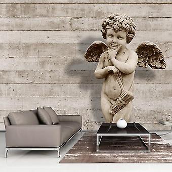Papel de parede vintage - Rosto Angelical