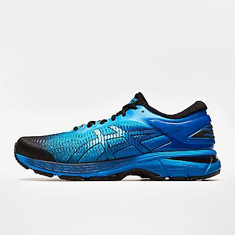 Asics Kayano 25 SP Mens Running Shoes