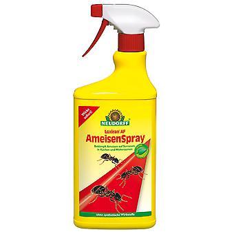 NEUDORFF Loxiran® AF AntsSpray, 750 ml