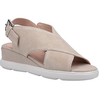 Geox Womens D Pisa A Buckle Sandal Light Taupe