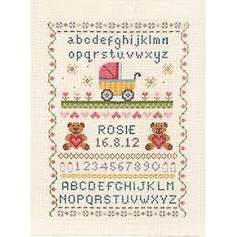 Anchor Counted Cross Stitched Kit ACS31 Birth Classic New 28.5x20cm