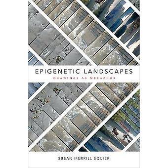 Epigenetic Landscapes Drawings as Metaphor