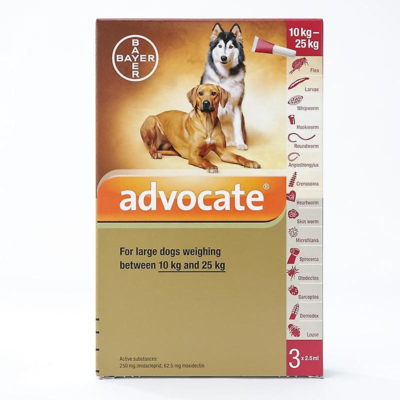 Advocate for Large Dogs 10-25kg (22-55lbs), 3 Pack