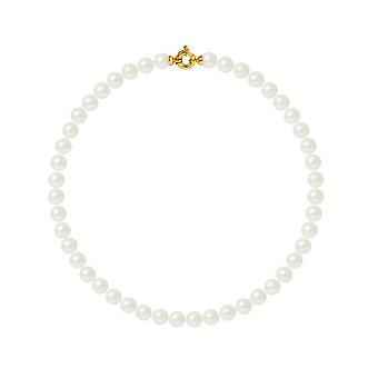 Neck collar Woman Cultured Pearls of White Sa1; 10 mm AA and Yellow Gold Clasp 750/1000 7885