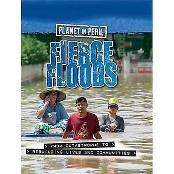 Planet in Gefahr: heftige Überschwemmungen