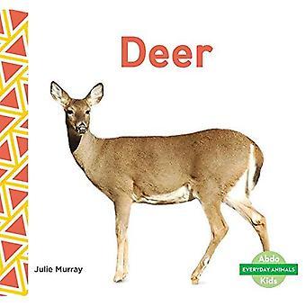 Hjort (daglig dyr)
