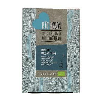 Pure Breathing Tea 20 infusion bags of 1.75g