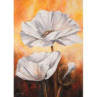 White flowers II Poster Print by  Lenna Lotus