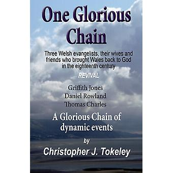 One Glorious Chain by Christopher J Tokeley