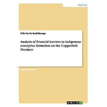 Analysis of Financial Barriers to Indigenous Enterprise Formation on