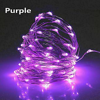 Usb 10m 100 leds purple usb led string lights 10m 5m 3m 2m, silver wire waterproof fairy light az16807