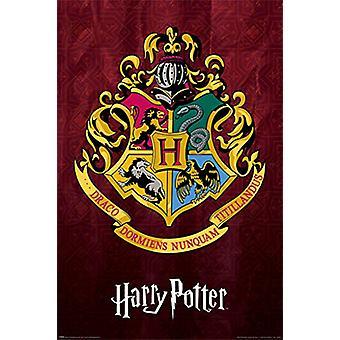 Harry Potter poster Zweinstein kuif 140