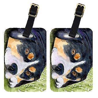 Carolines Treasures  SS8596BT Pair of 2 Entlebucher Mountain Dog Luggage Tags