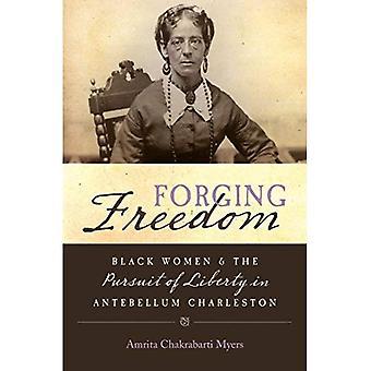 Schmieden-Freiheit: Schwarze Frauen und das Streben nach Freiheit in Antebellum Charleston (Geschlecht und Americana)