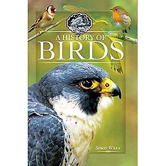 Historia linnut (nid.)
