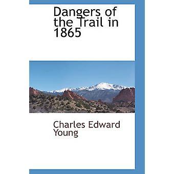 チャールズ ・ エドワード ・ ヤングによって 1865 年に歩道の危険性