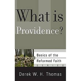 What Is Providence? by Derek W H Thomas - 9781596380929 Book