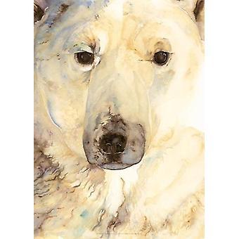 Jackie Morris Ice Bear Poster by Jackie Morris - 9781912213597 Book