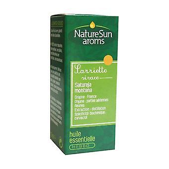 Perennial Savory essential oil 10 ml of essential oil