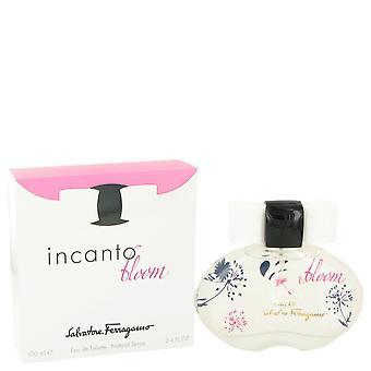 Incanto Bloom-tekijä Salvatore Ferragamo Eau De Toilette Spray (New Packaging) 3,4 oz