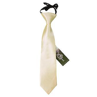 Champagne-vlakte Satin elastisch stropdas voor jongens
