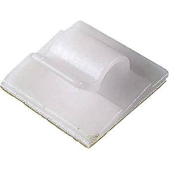 PB Fastener 5436 Clip Zelfklevende 5436 Bundel Ø bereik 15 mm (max) Ecru 1 pc(s)