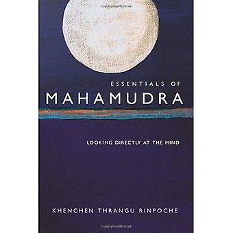Essentials of Mahamudra: regarder directement de l'esprit