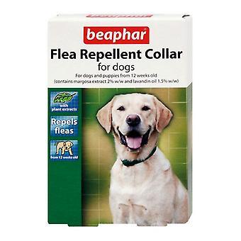 Beaphar Flea Obroża wodoodporna