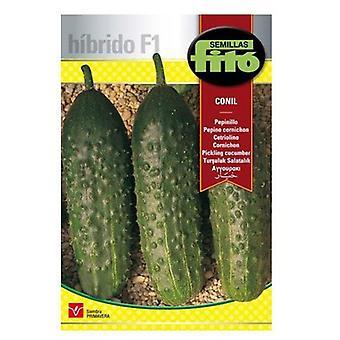 Semillas Fitó Hybrid conil gherkin (Garden , Gardening , Seeds)